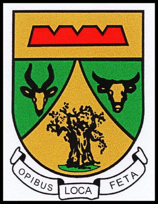 Musina Town crest (2)